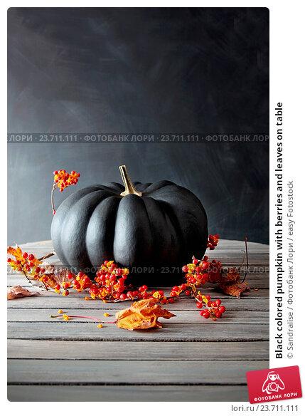 Купить «Black colored pumpkin with berries and leaves on table», фото № 23711111, снято 29 октября 2013 г. (c) easy Fotostock / Фотобанк Лори