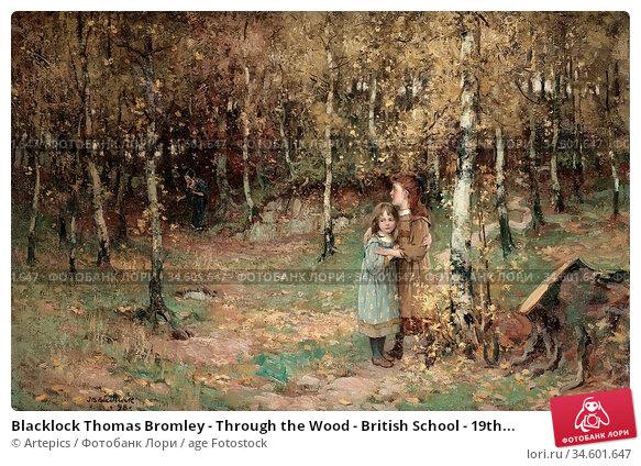 Blacklock Thomas Bromley - Through the Wood - British School - 19th... Стоковое фото, фотограф Artepics / age Fotostock / Фотобанк Лори