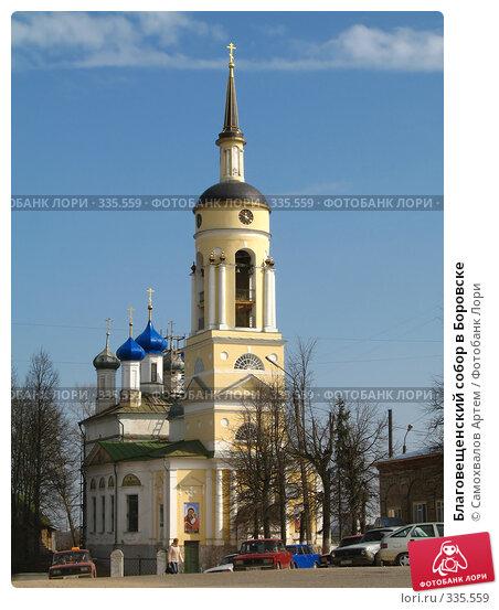 Купить «Благовещенский собор в Боровске», эксклюзивное фото № 335559, снято 24 ноября 2017 г. (c) Самохвалов Артем / Фотобанк Лори
