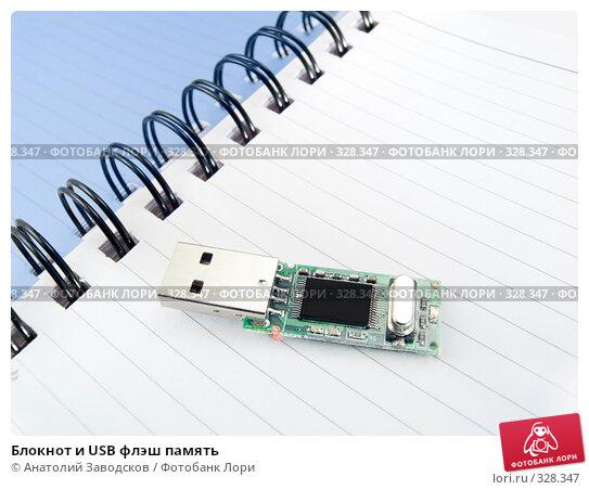 Блокнот и USB флэш память, фото № 328347, снято 7 января 2007 г. (c) Анатолий Заводсков / Фотобанк Лори