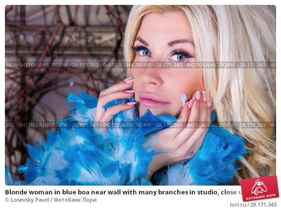 Купить «Blonde woman in blue boa near wall with many branches in studio, close up», фото № 28171343, снято 27 ноября 2015 г. (c) Losevsky Pavel / Фотобанк Лори