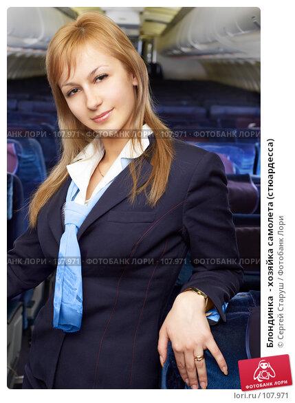 Блондинка  - хозяйка самолета (стюардесса), фото № 107971, снято 8 февраля 2007 г. (c) Сергей Старуш / Фотобанк Лори