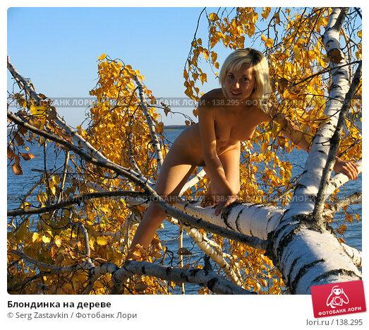 Блондинка на дереве, фото № 138295, снято 18 сентября 2005 г. (c) Serg Zastavkin / Фотобанк Лори