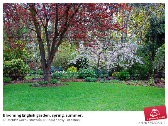 Blooming English garden, spring, summer. Стоковое фото, фотограф Dariusz Gora / easy Fotostock / Фотобанк Лори