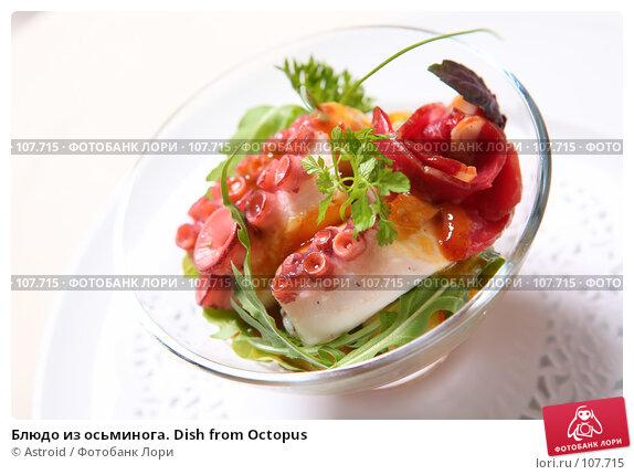 Блюдо из осьминога. Dish from Octopus, фото № 107715, снято 1 октября 2007 г. (c) Astroid / Фотобанк Лори
