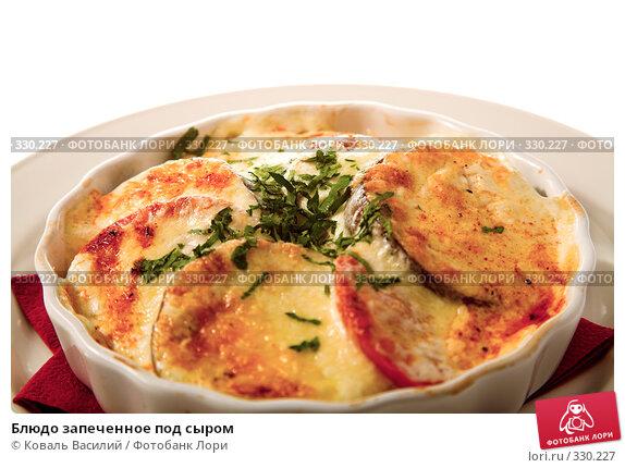 Блюдо запеченное под сыром, фото № 330227, снято 23 апреля 2008 г. (c) Коваль Василий / Фотобанк Лори