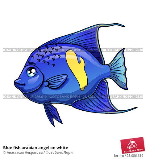 Купить «Blue fish arabian angel on white», иллюстрация № 25086619 (c) Анастасия Некрасова / Фотобанк Лори