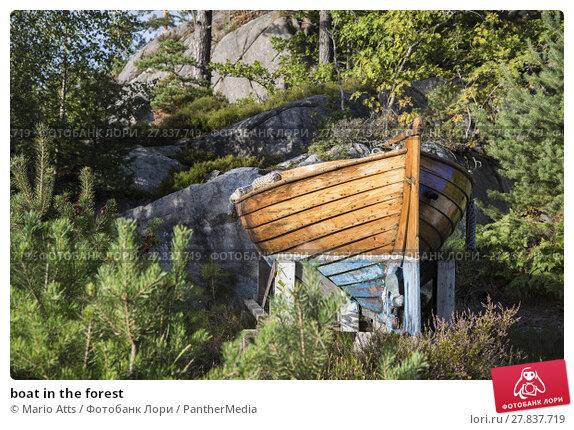 Купить «boat in the forest», фото № 27837719, снято 20 октября 2018 г. (c) PantherMedia / Фотобанк Лори