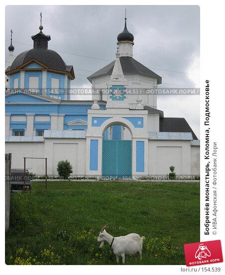 Бобренёв монастырь, Коломна, Подмосковье, фото № 154539, снято 18 июня 2006 г. (c) ИВА Афонская / Фотобанк Лори