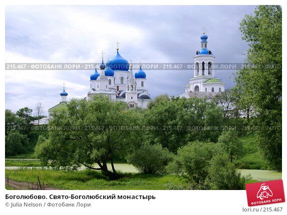 Боголюбово. Свято-Боголюбский монастырь, фото № 215467, снято 10 июня 2007 г. (c) Julia Nelson / Фотобанк Лори