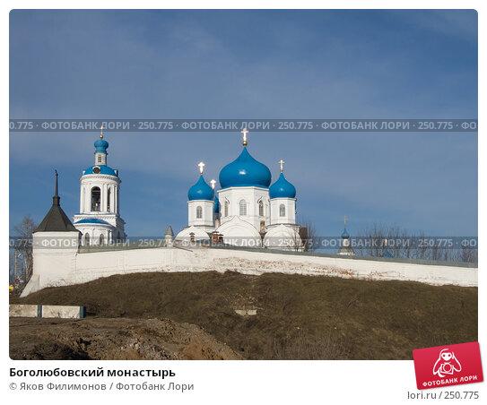 Купить «Боголюбовский монастырь», фото № 250775, снято 2 апреля 2008 г. (c) Яков Филимонов / Фотобанк Лори
