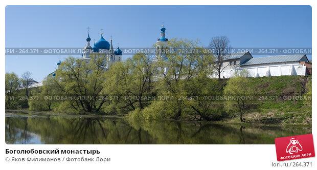 Боголюбовский монастырь, фото № 264371, снято 21 февраля 2017 г. (c) Яков Филимонов / Фотобанк Лори
