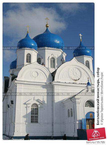 Боголюбовский монастырь, собор, эксклюзивное фото № 15795, снято 5 ноября 2006 г. (c) Ирина Терентьева / Фотобанк Лори