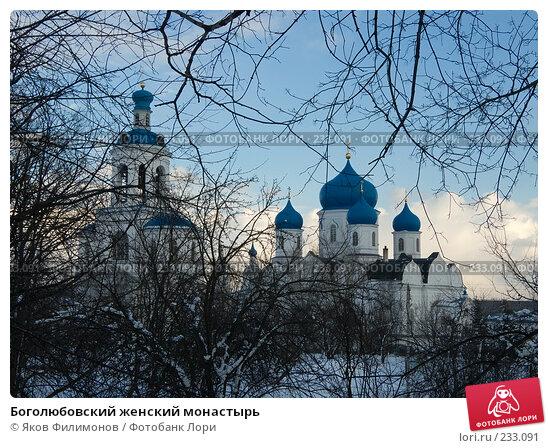 Боголюбовский женский монастырь, фото № 233091, снято 21 марта 2008 г. (c) Яков Филимонов / Фотобанк Лори