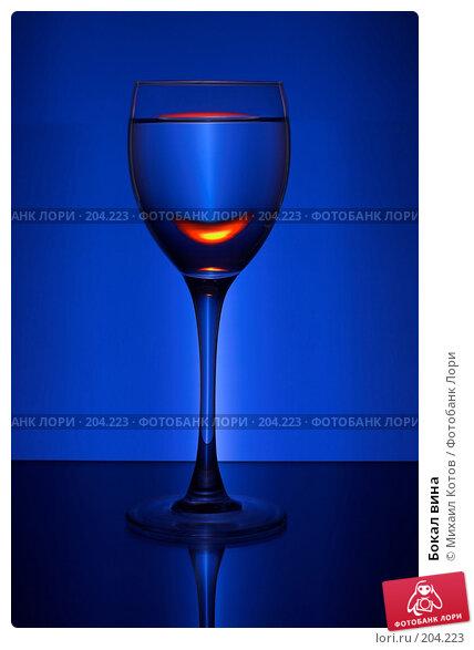 Бокал вина, фото № 204223, снято 25 октября 2016 г. (c) Михаил Котов / Фотобанк Лори
