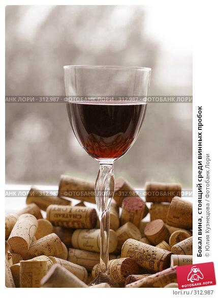 Бокал вина, стоящий среди винных пробок, фото № 312987, снято 3 июня 2008 г. (c) Юлия Кузнецова / Фотобанк Лори