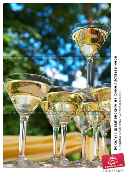 Бокалы с шампанским  на фоне листвы и неба, эксклюзивное фото № 62643, снято 14 июля 2007 г. (c) Ирина Мойсеева / Фотобанк Лори
