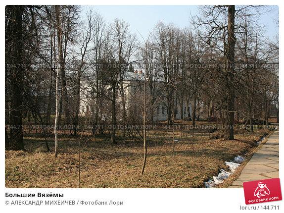 Большие Вязёмы, фото № 144711, снято 24 марта 2007 г. (c) АЛЕКСАНДР МИХЕИЧЕВ / Фотобанк Лори