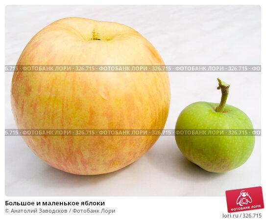 Большое и маленькое яблоки, фото № 326715, снято 30 июня 2007 г. (c) Анатолий Заводсков / Фотобанк Лори