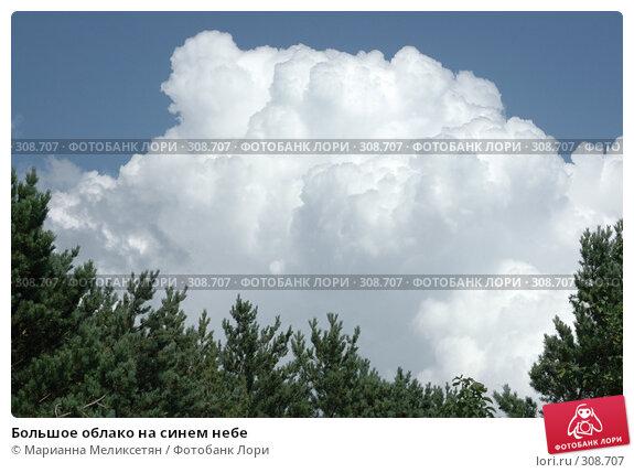 Купить «Большое облако на синем небе», фото № 308707, снято 3 августа 2006 г. (c) Марианна Меликсетян / Фотобанк Лори