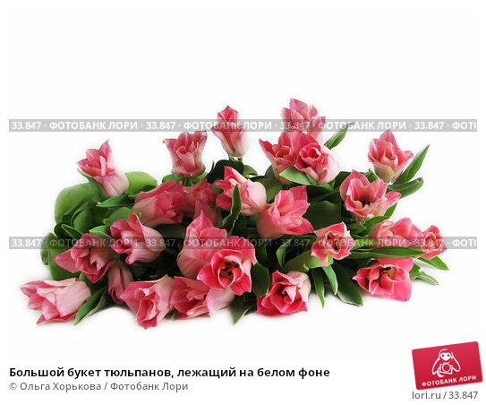 Большой букет тюльпанов, лежащий на белом фоне, фото № 33847, снято 8 марта 2007 г. (c) Ольга Хорькова / Фотобанк Лори