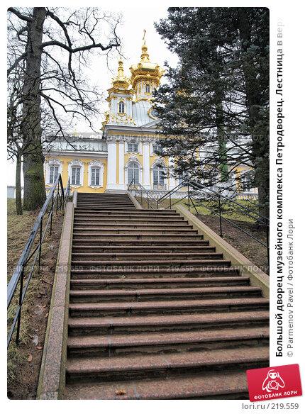 Большой дворец музейного комплекса Петродворец. Лестница в верхний сад, фото № 219559, снято 13 февраля 2008 г. (c) Parmenov Pavel / Фотобанк Лори