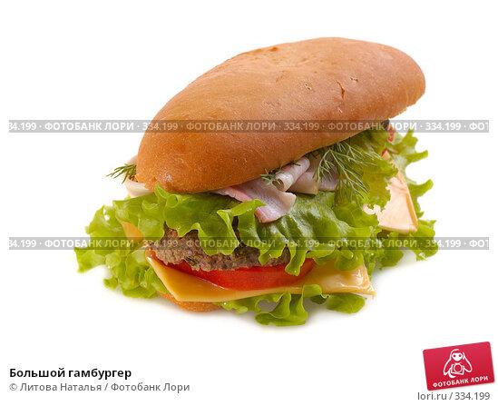 Большой гамбургер, фото № 334199, снято 15 января 2008 г. (c) Литова Наталья / Фотобанк Лори