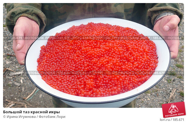 Купить «Большой таз красной икры», фото № 185671, снято 21 июля 2007 г. (c) Ирина Игумнова / Фотобанк Лори