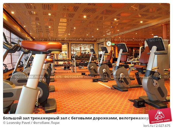 Купить «Большой зал тренажерный зал с беговыми дорожками, велотренажер и гантели», фото № 2027675, снято 13 апреля 2010 г. (c) Losevsky Pavel / Фотобанк Лори