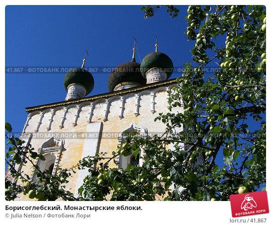 Борисоглебский. Монастырские яблоки., фото № 41867, снято 20 июля 2004 г. (c) Julia Nelson / Фотобанк Лори