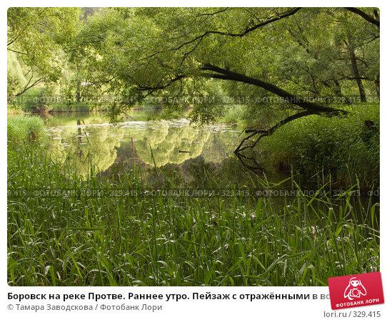Купить «Боровск на реке Протве. Раннее утро. Пейзаж с отражёнными в воде деревьями», эксклюзивное фото № 329415, снято 15 июня 2008 г. (c) Тамара Заводскова / Фотобанк Лори