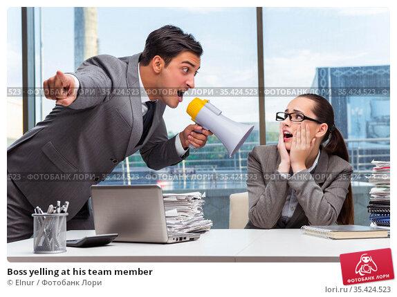 Boss yelling at his team member. Стоковое фото, фотограф Elnur / Фотобанк Лори