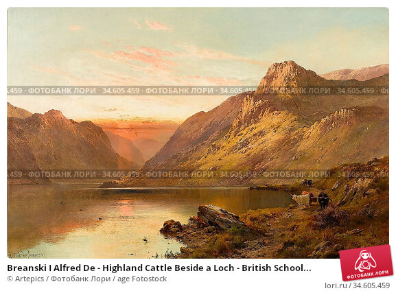 Breanski I Alfred De - Highland Cattle Beside a Loch - British School... Стоковое фото, фотограф Artepics / age Fotostock / Фотобанк Лори
