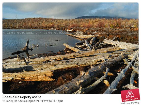 Бревна на берегу озера, фото № 93759, снято 6 октября 2007 г. (c) Валерий Александрович / Фотобанк Лори