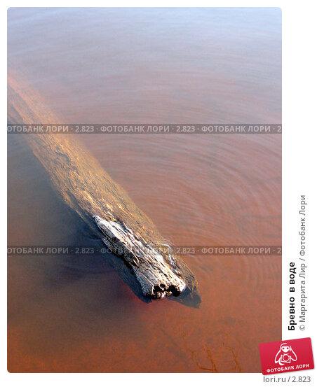 Бревно  в воде, фото № 2823, снято 26 марта 2017 г. (c) Маргарита Лир / Фотобанк Лори