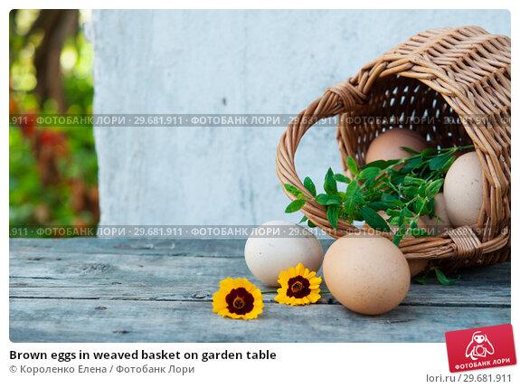 Купить «Brown eggs in weaved basket on garden table», фото № 29681911, снято 5 августа 2018 г. (c) Короленко Елена / Фотобанк Лори