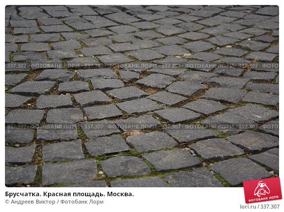 Брусчатка. Красная площадь. Москва., фото № 337307, снято 16 апреля 2006 г. (c) Андреев Виктор / Фотобанк Лори