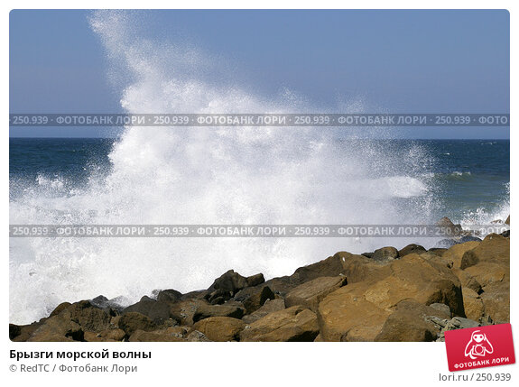 Брызги морской волны, фото № 250939, снято 14 апреля 2008 г. (c) RedTC / Фотобанк Лори
