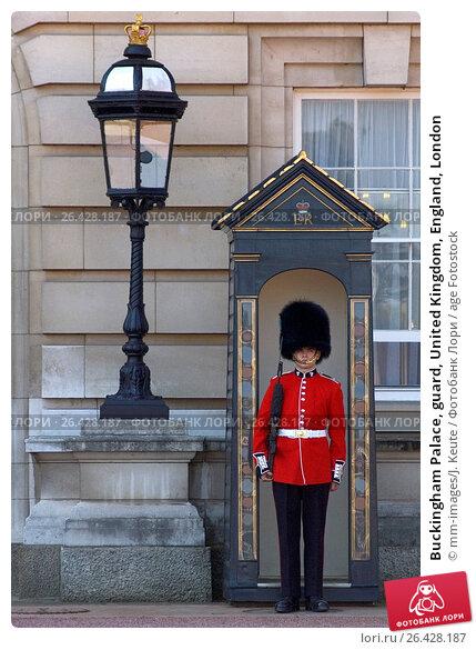 Купить «Buckingham Palace, guard, United Kingdom, England, London», фото № 26428187, снято 23 февраля 2019 г. (c) age Fotostock / Фотобанк Лори