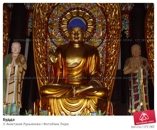 Будда, фото № 177787, снято 15 ноября 2007 г. (c) Анастасия Лукьянова / Фотобанк Лори