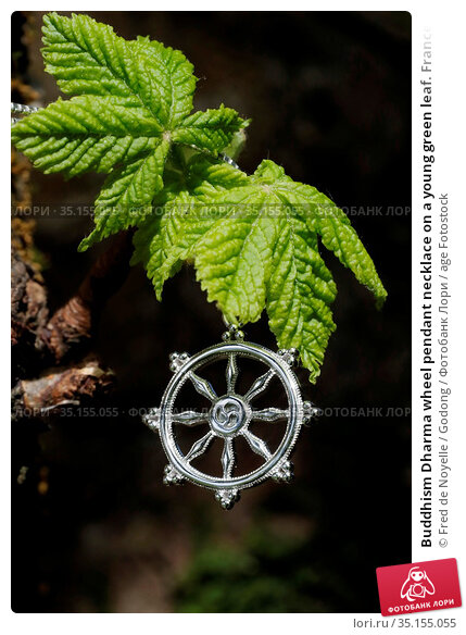 Buddhism Dharma wheel pendant necklace on a young green leaf. France. Стоковое фото, фотограф Fred de Noyelle / Godong / age Fotostock / Фотобанк Лори
