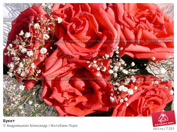 Букет, фото № 7531, снято 28 августа 2004 г. (c) Андрияшкин Александр / Фотобанк Лори