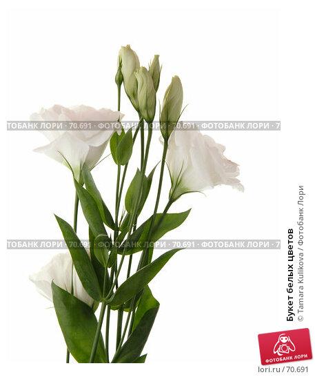 Букет белых цветов, фото № 70691, снято 12 августа 2007 г. (c) Tamara Kulikova / Фотобанк Лори