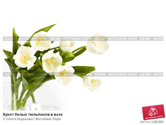 Букет белых тюльпанов в вазе, фото № 228003, снято 8 марта 2008 г. (c) Ольга Хорькова / Фотобанк Лори