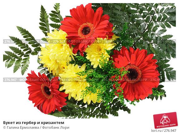 Букет из гербер и хризантем, фото № 276947, снято 19 апреля 2008 г. (c) Галина Ермолаева / Фотобанк Лори
