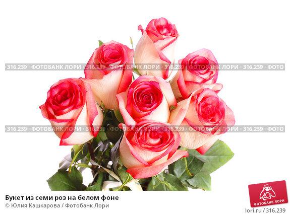 Букет из семи роз на белом фоне, фото № 316239, снято 16 марта 2008 г. (c) Юлия Кашкарова / Фотобанк Лори