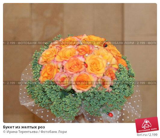 Купить «Букет из желтых роз», эксклюзивное фото № 2199, снято 20 августа 2005 г. (c) Ирина Терентьева / Фотобанк Лори