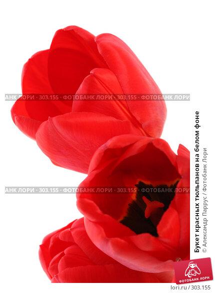 Букет красных тюльпанов на белом фоне, фото № 303155, снято 21 апреля 2008 г. (c) Александр Паррус / Фотобанк Лори