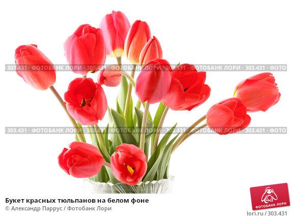 Букет красных тюльпанов на белом фоне, фото № 303431, снято 21 апреля 2008 г. (c) Александр Паррус / Фотобанк Лори