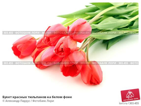 Букет красных тюльпанов на белом фоне, фото № 303455, снято 21 апреля 2008 г. (c) Александр Паррус / Фотобанк Лори